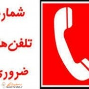 تلفن اضطراری
